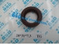 Oil Seal 20*31*7.3 (TG)